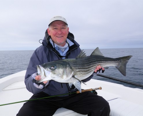 Phil Clough Striper Martha's Vineyard