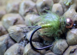 Olive Body Quill Nymph