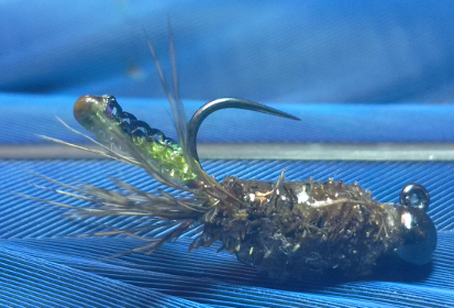 ARM Peeking Caddis