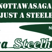 Wild Nottawasaga River Steelhead Stickers