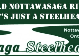 Wild Nottawasaga River Steelhead Stickers