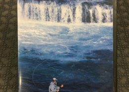 DVD - The Perfect Cast - The Art of Fly Casting Single & Double Handed Rods - Henrik Mortensen - $10