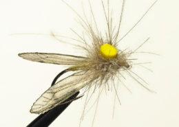 CDC Crane Fly