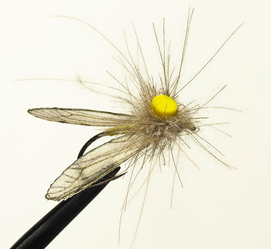 CDC Crane Fly - The First Cast - Hook, Line and Sinker's Fly