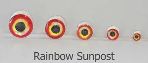 Lightweight rainbow Dumbells - D
