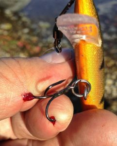 Rapala Treble Hook in Both Fingers AAA