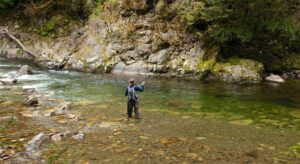 Fly Fishing for Brown Trout in New Zealand ...
