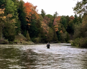 Spey Casting The Lower Nottawasaga River ...