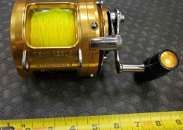 Penn International II - 30T - Saltwater High Profile Baitcasting Reel - Gold - GOOD SHAPE! - $300